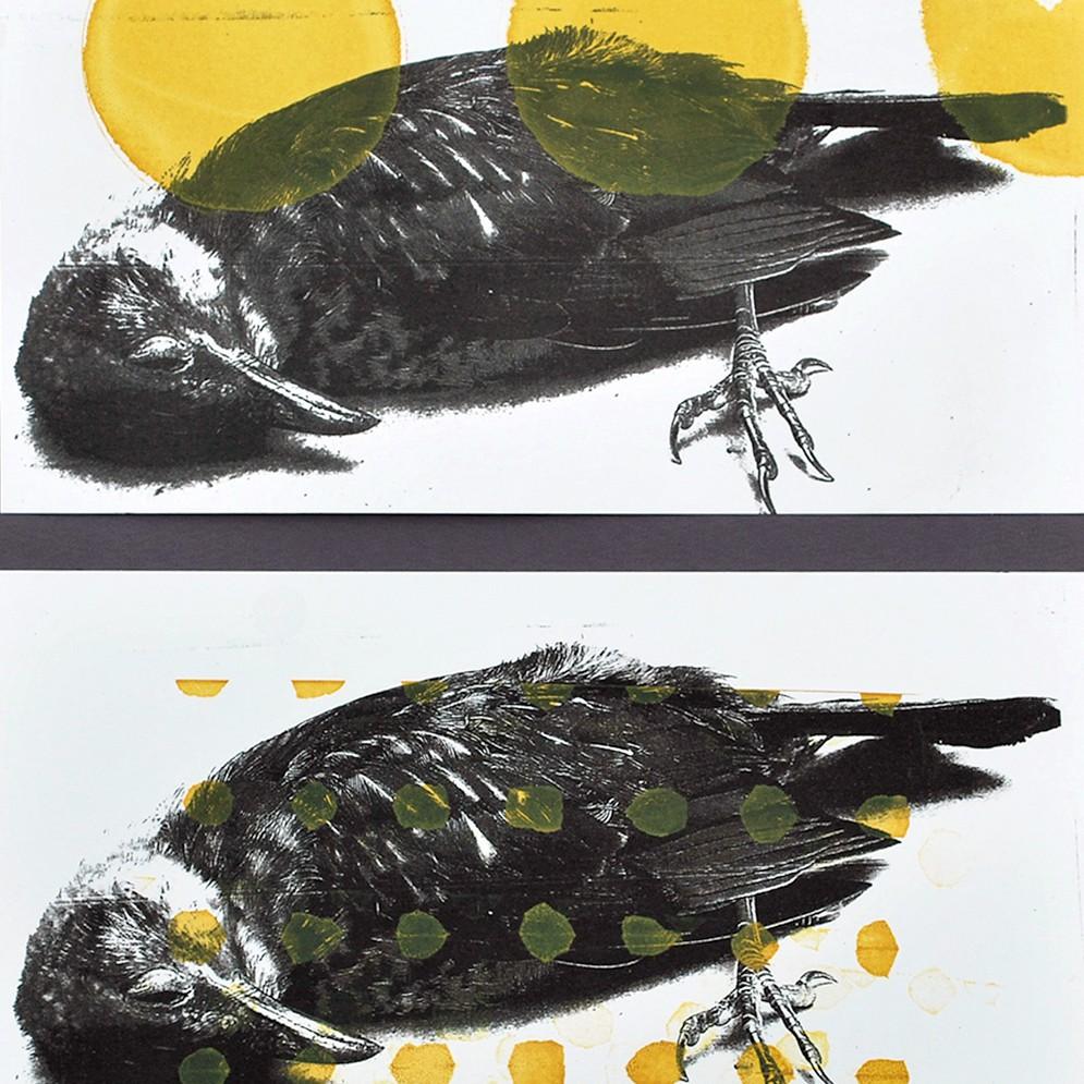 Dode Vogels zeefdruk - 15x20cm tweemaal