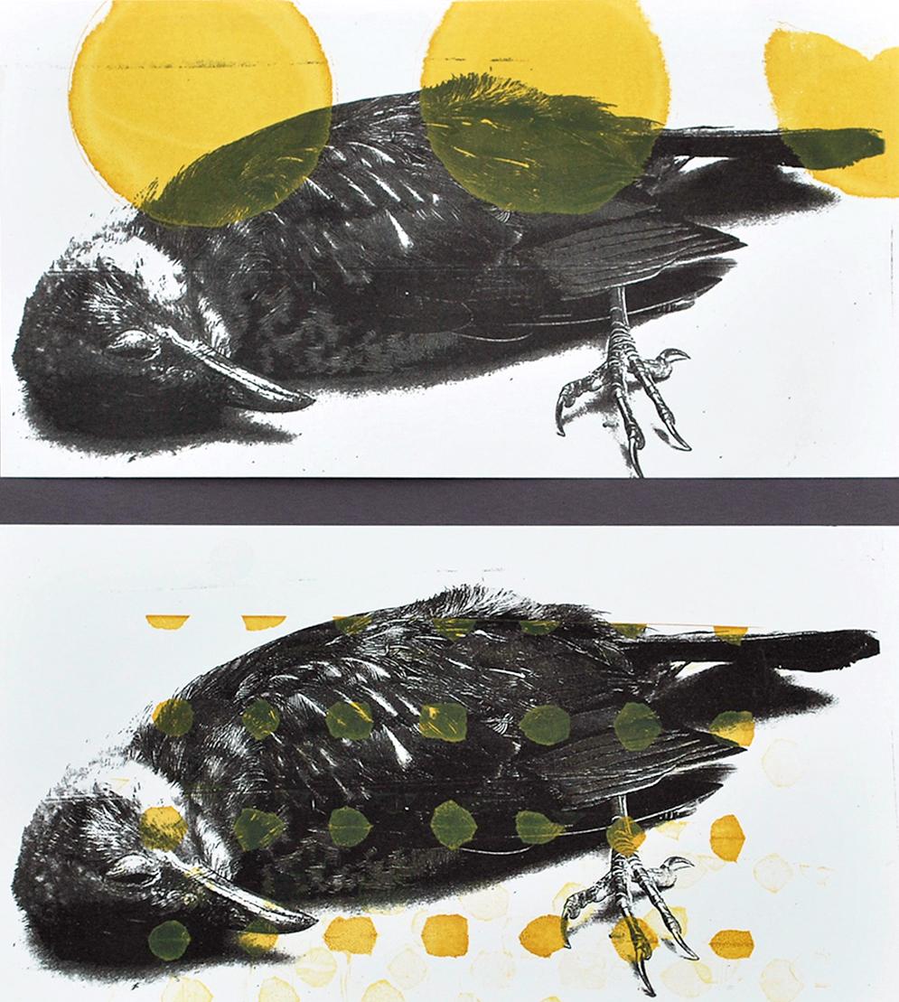 Dode Vogels^ zeefdruk - 15x20cm tweemaal