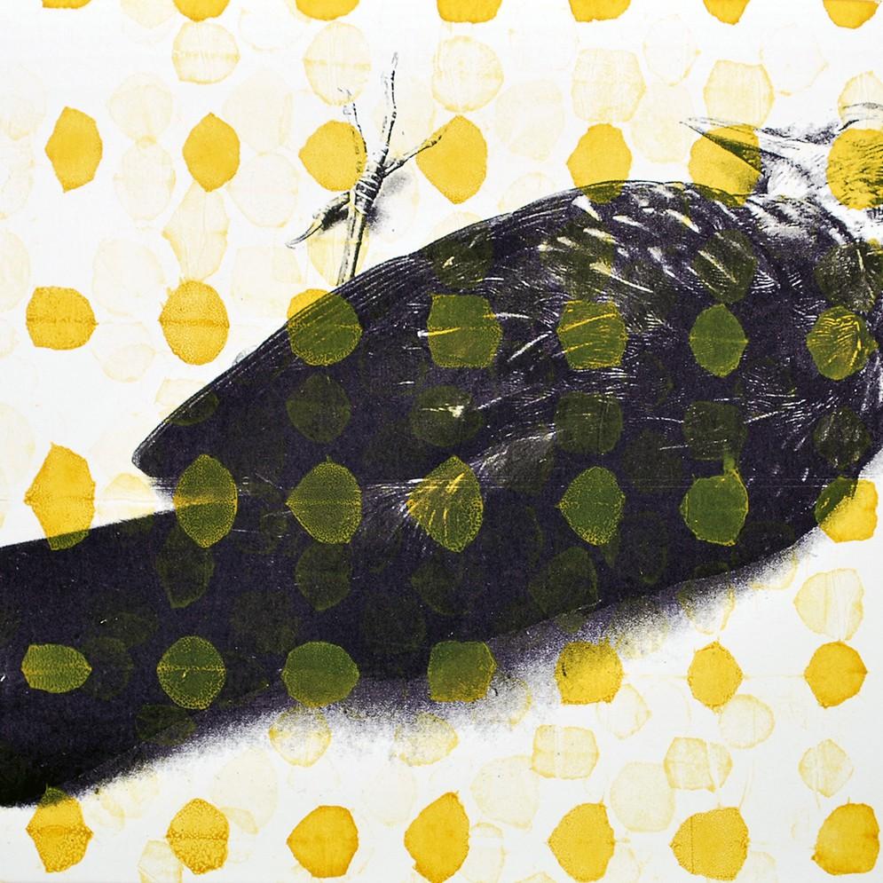 Serie Dode Vogels zeefdruk - 30x20cm